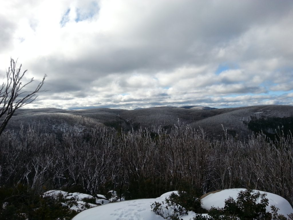 The view from the summit lookout.